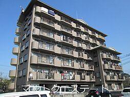サンライズ日本[2階]の外観