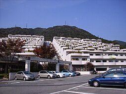 ジオ六甲山手[9階]の外観