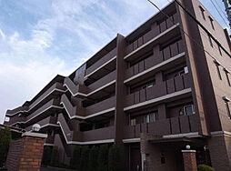 千葉県船橋市前原西3丁目の賃貸マンションの画像