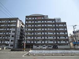 第3元木ビル[4階]の外観