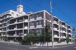 ドルチェ旭ヶ丘[206号室号室]の外観