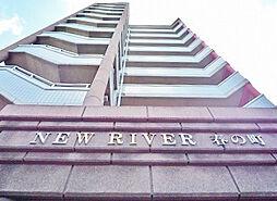 ニューリバー春の町[11階]の外観