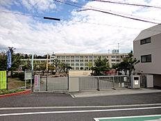 朝霧小学校(730m)