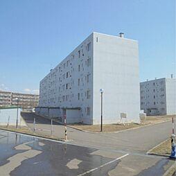 ビレッジハウス江別1号棟[4階]の外観
