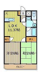 埼玉県朝霞市泉水3丁目の賃貸マンションの間取り