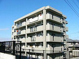 エクセレント岡本[302号室]の外観