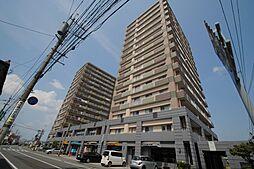 ツインドリーム荒木弐番館[11階]の外観