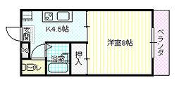 長野県長野市平林2丁目の賃貸アパートの間取り
