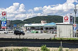 コメリハードアンドグリーン豊野店(286m)