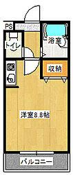 ツインアークス[205号室号室]の間取り