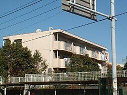 ネオフラッツ[1階]の外観