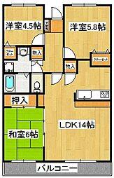 千葉県船橋市二子町の賃貸マンションの間取り