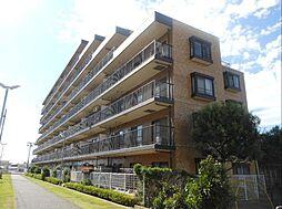 千葉県船橋市飯山満町2丁目の賃貸マンションの外観