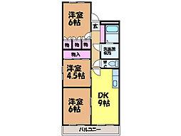愛媛県松山市今在家4丁目の賃貸マンションの間取り