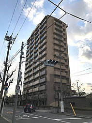 サニーコットン住之江[11階]の外観