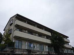 長野県茅野市豊平の賃貸マンションの外観