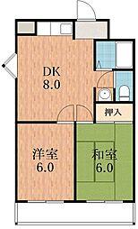 ワイズコート松崎町[5階]の間取り