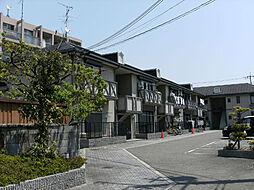 ハイツ西取石[203号室]の外観