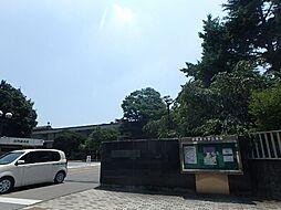 仮称 峰町メゾン[2階]の外観