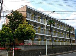 埼玉県さいたま市西区三橋5丁目の賃貸マンションの外観