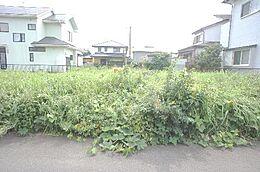 現地写真です。