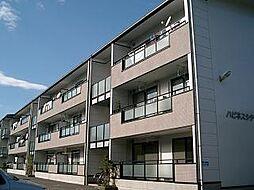 高知県高知市北秦泉寺の賃貸アパートの外観