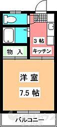 キャッスル和泉[203号室]の間取り