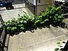 バルコニー,1K,面積23.4m2,賃料3.8万円,JR姫新線 余部駅 3.2km,,兵庫県姫路市書写