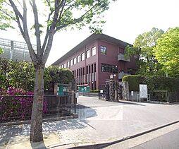 [一戸建] 京都府京都市北区紫竹上本町 の賃貸【/】の外観