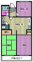 埼玉県川口市東本郷の賃貸マンションの間取り
