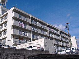 コーポ宮島[208号室]の外観