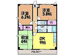 愛媛県松山市古川北1丁目の賃貸マンションの間取り