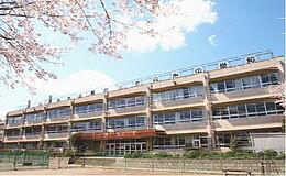 五日市中学校(1000m)
