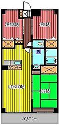 埼玉県川口市領家3丁目の賃貸マンションの間取り