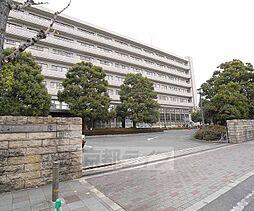 [テラスハウス] 京都府京都市右京区西院西田町 の賃貸【/】の外観