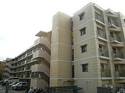 サンクタスリビオ学園大和町[6階]の外観