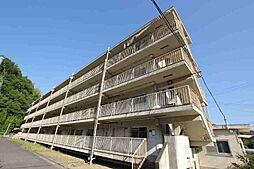 広島県府中市中須町の賃貸マンションの外観