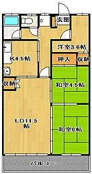 フローラコヤナギ[2階]の間取り