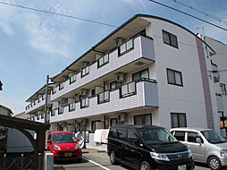 兵庫県たつの市揖保川町山津屋の賃貸マンションの外観