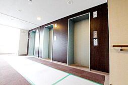 エレベーター複数台稼働中です。