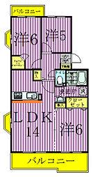 千葉県柏市藤心3丁目の賃貸マンションの間取り