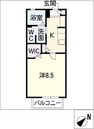 CHESTNUT HILL[1階]の間取り