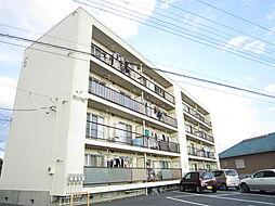 茨城県ひたちなか市大字東石川の賃貸マンションの外観