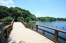公園洗足池公園まで719m