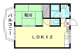 愛媛県松山市和泉南4丁目の賃貸アパートの間取り
