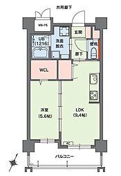クラシオン小笹山手5番館 1階1LDKの間取り