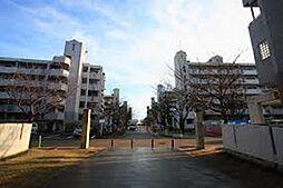 アルビス寺本[2階]の外観