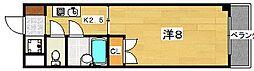 サニーカーサ[7階]の間取り