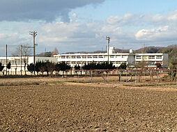 東明小学校(350m)