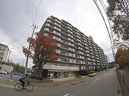 兵庫県宝塚市小浜2丁目の賃貸マンションの外観